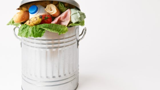 Ruoka ei todellakaan kuulu roskikseen