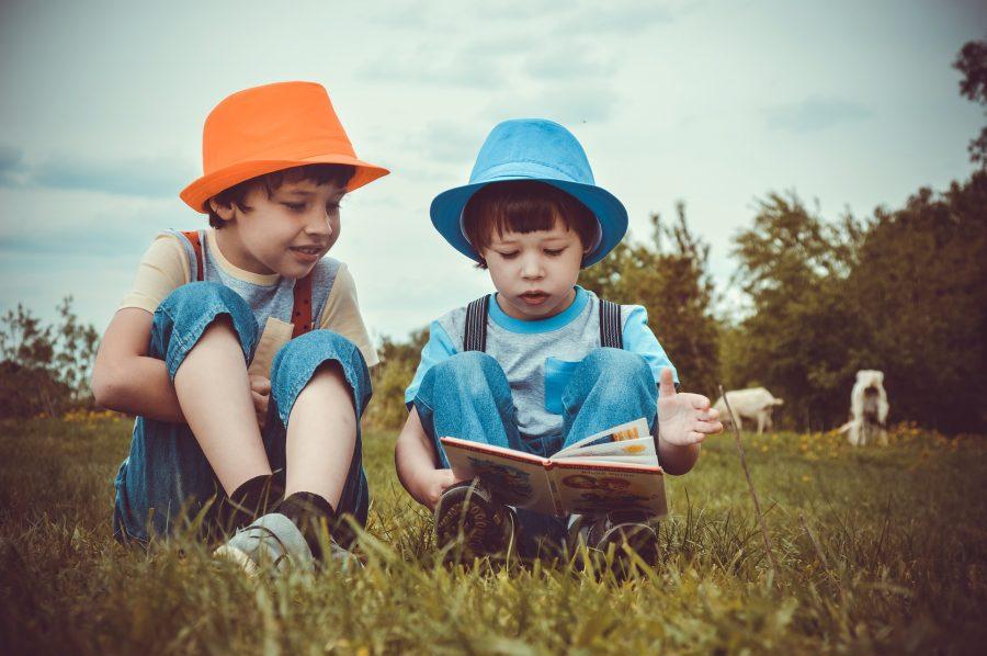 Kaksi poikaa istumassa niityllä. Toinen lukee kirjaa, toinen kuuntelee.