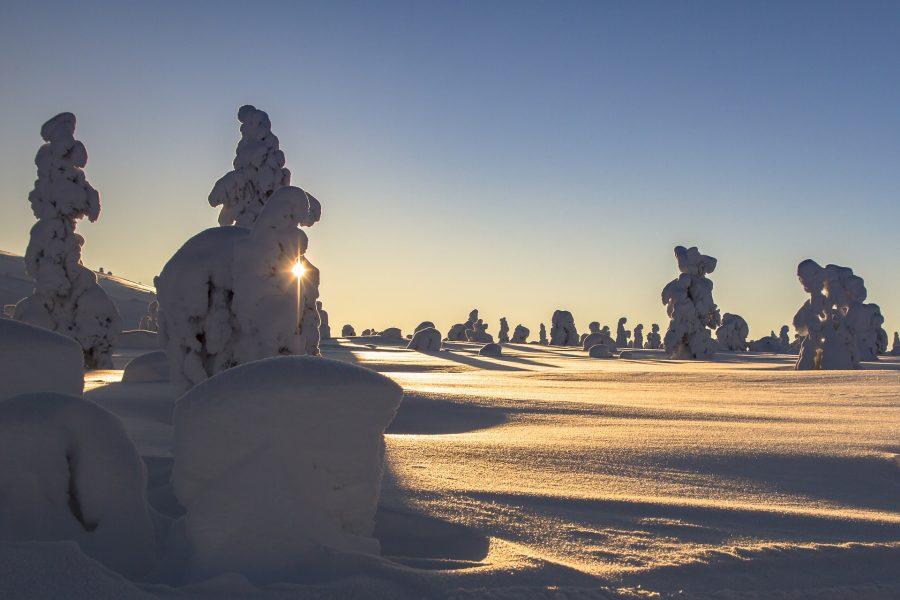 Luminen talvipäivä.