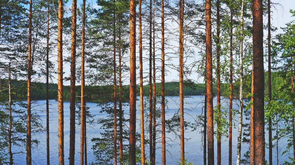 Suomesta ratkaisuja ilmastonmuutokseen