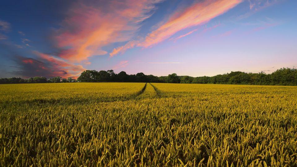 Maatalous- ja aluetuet ovat jatkossakin suurin EU-tukien saaja