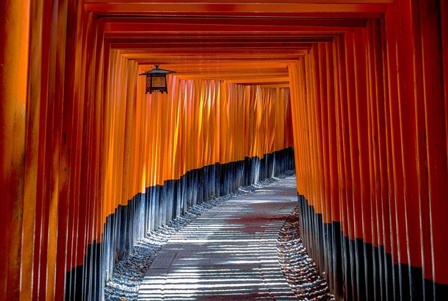 Japanilaisia punaisia torii-portteja.
