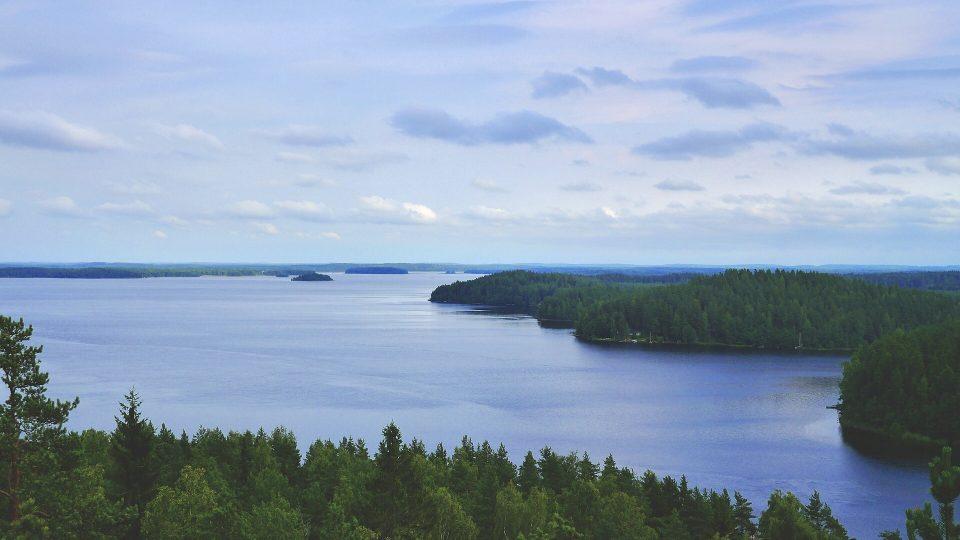 Itä-Suomi on luonnostaan vahva biotalouden kokeilualusta