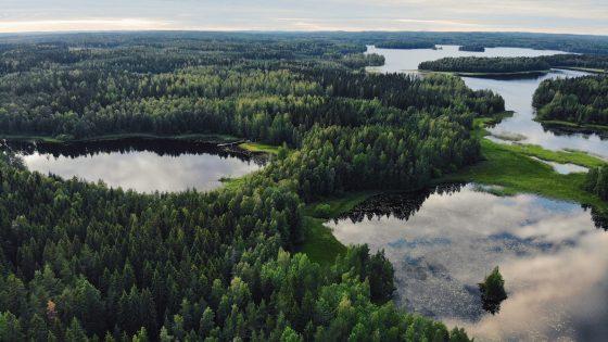Komission biodiversiteettistrategia vie hetteiselle maaperälle